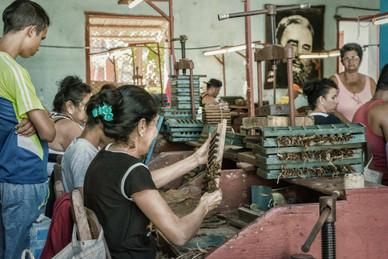Cigar Factory - Gibara, Cuba
