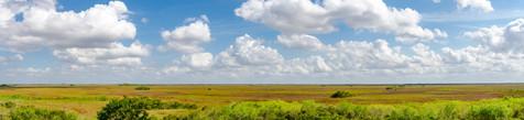 Everglades Panorama - Shark Alley, Everglades National Park, Florida