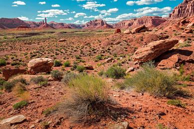 Southern Utah Desert - Utah