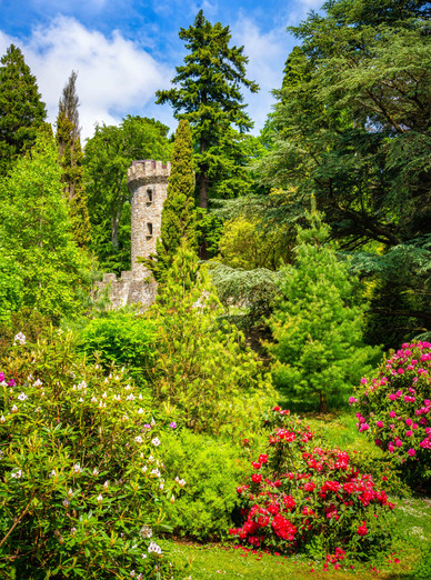 In the Powerscourt Gardens - County Wicklow