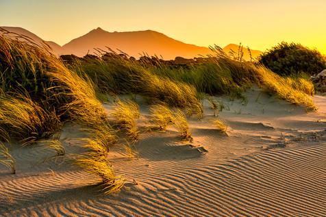 Sunset Along the Tasman Sea - Okuru