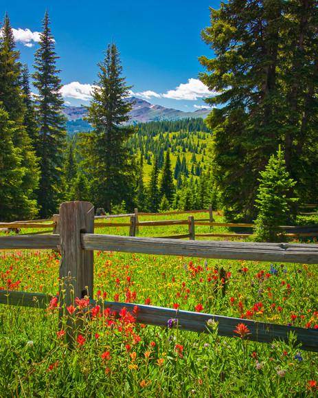 Shrine Pass - Vail, Colorado