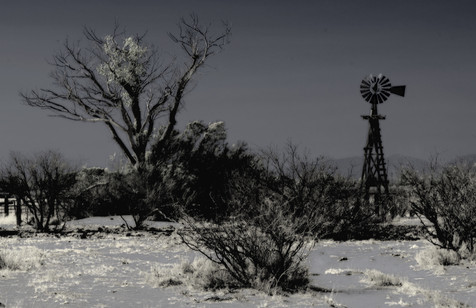 Windmill and Corral - Willcox