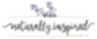 NIS Logo Rev 0916.png