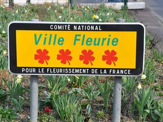 Kom och njut av alla blommor!
