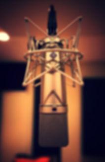 Sound Cellar Recording Studio Neuman U87