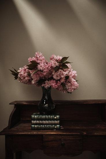 Blossoms & Books