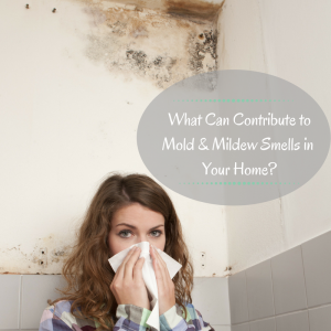 5 Benefits of Having a Dehumidifier in Your Crawl Space
