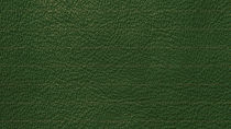 green-leather-texture-hd_edited_edited.j
