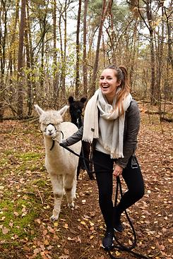 verrassingsreis-nederland-alpaca-wandeli