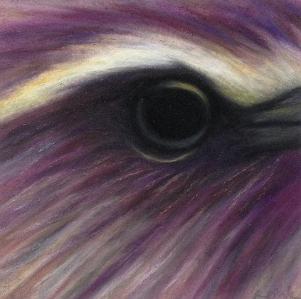 Purple Roller