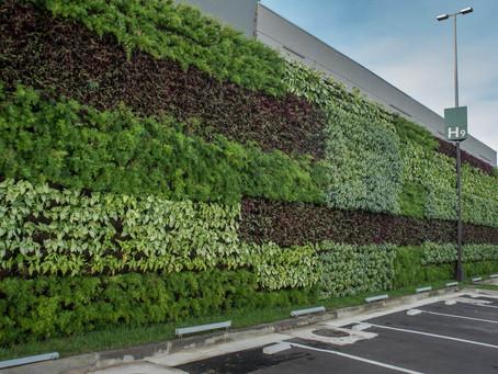 Tecnologias verdes ajudam a proteger o planeta