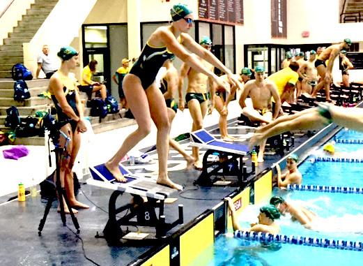 Swim Like Dolphins