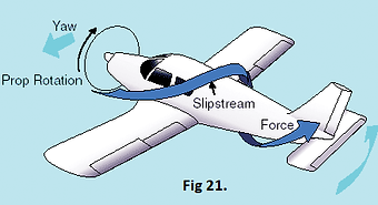Fig 21..png