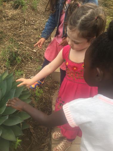 Girls and plants.JPG