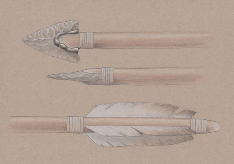 Arrow reconstruction