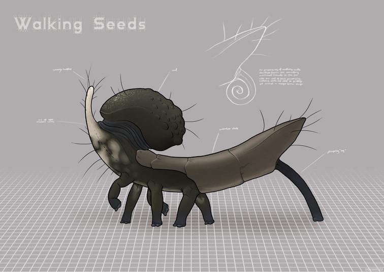 Walking seed/carrier module