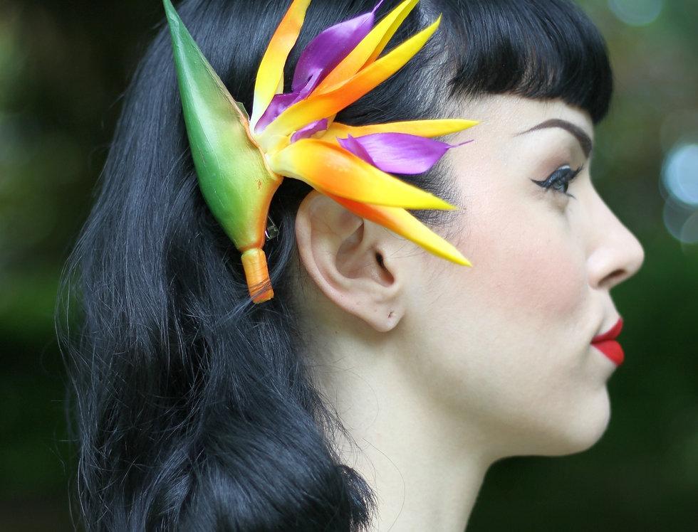 Bird Of Paradise Tropical Hair Flower