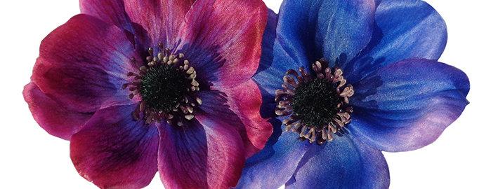 SOPHIA Double Anemone Hair Flower - Purple & Blue