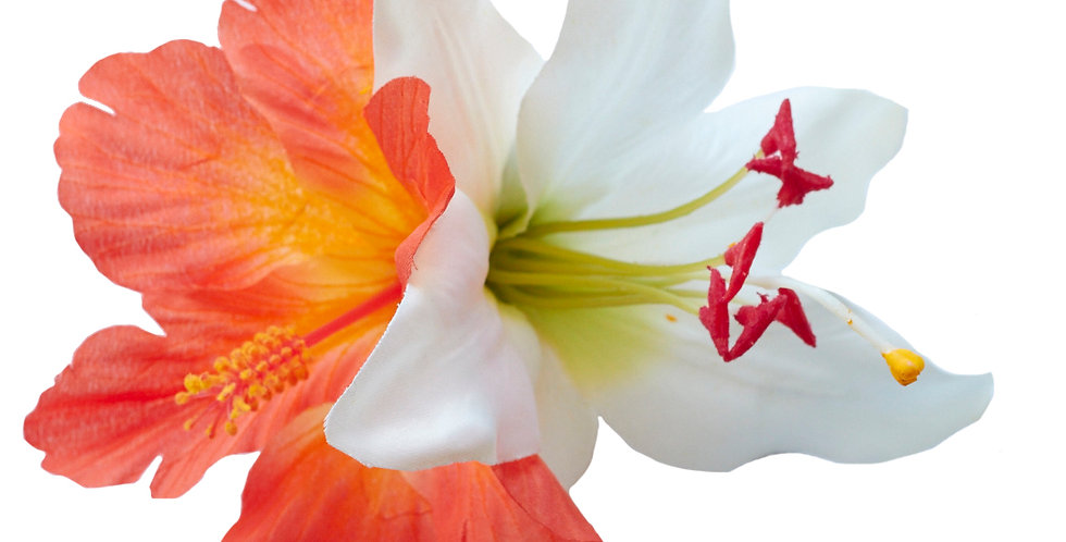 DEBRA MAY Hibiscus and Lily Hair Flower (Orange)