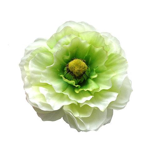MAY Single Ranunculus White Hair Flower