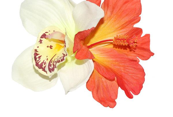 IZABELA Cream Orchid and Orange Hibiscus Hair Flower