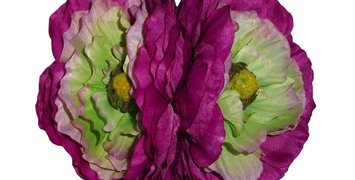 MAY Double Purple Ranunculus Autumn Hair Flower