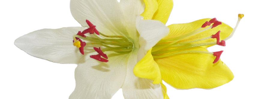 PALOMA White & Yellow Lily Hair Flower