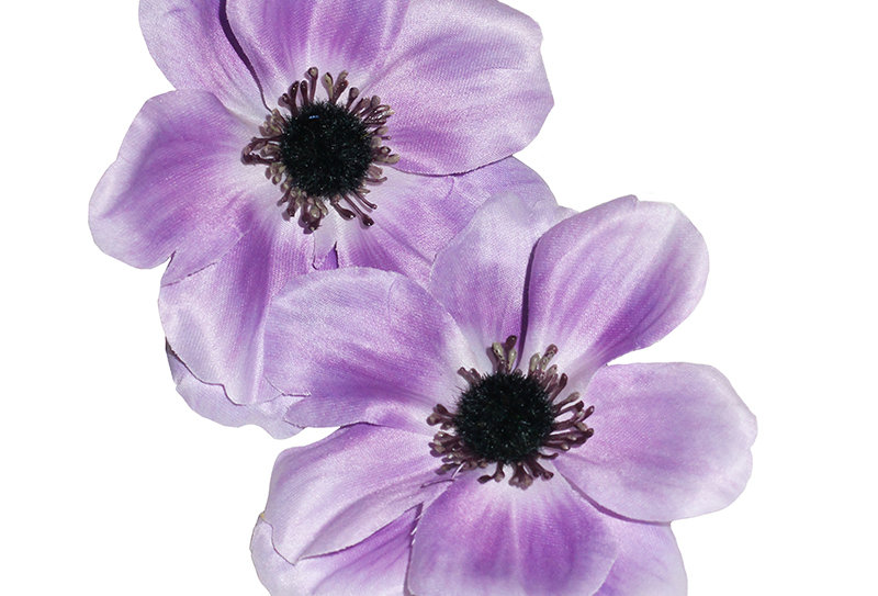 SOPHIA Double Anemone Hair Flower - Lilac