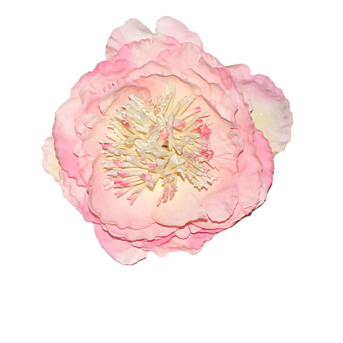 Pin up and rockabilly hair flowers large baby pink peony vintage hair flower mightylinksfo