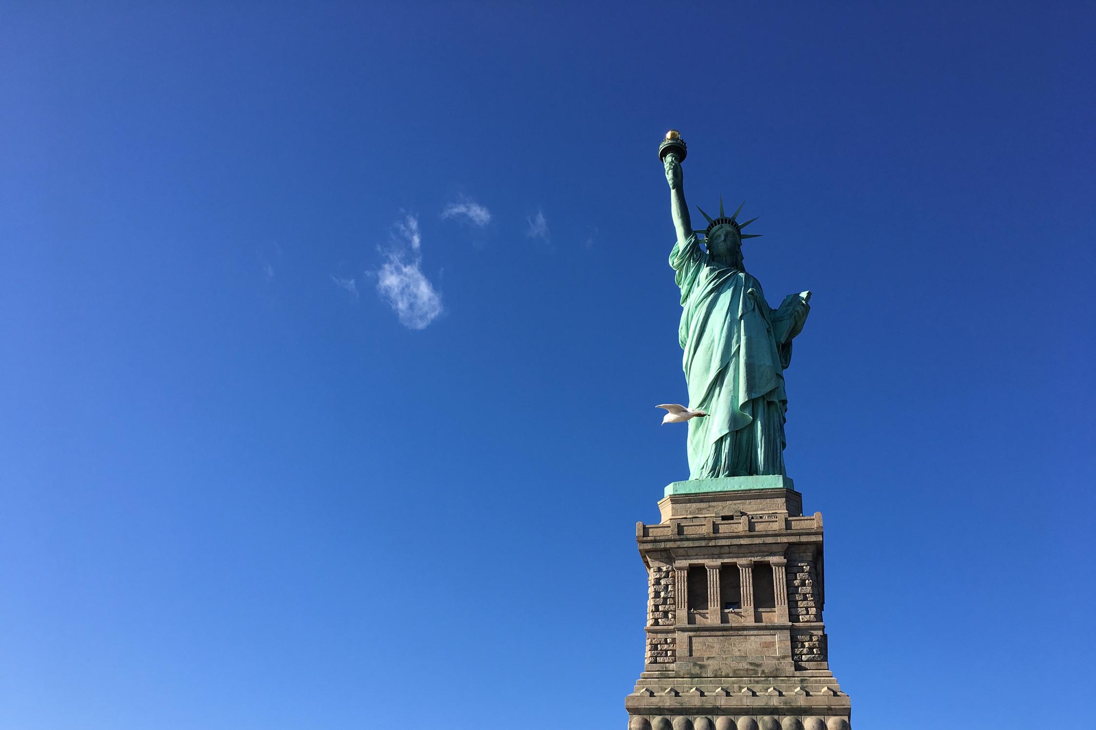 Liberty_Bird_5