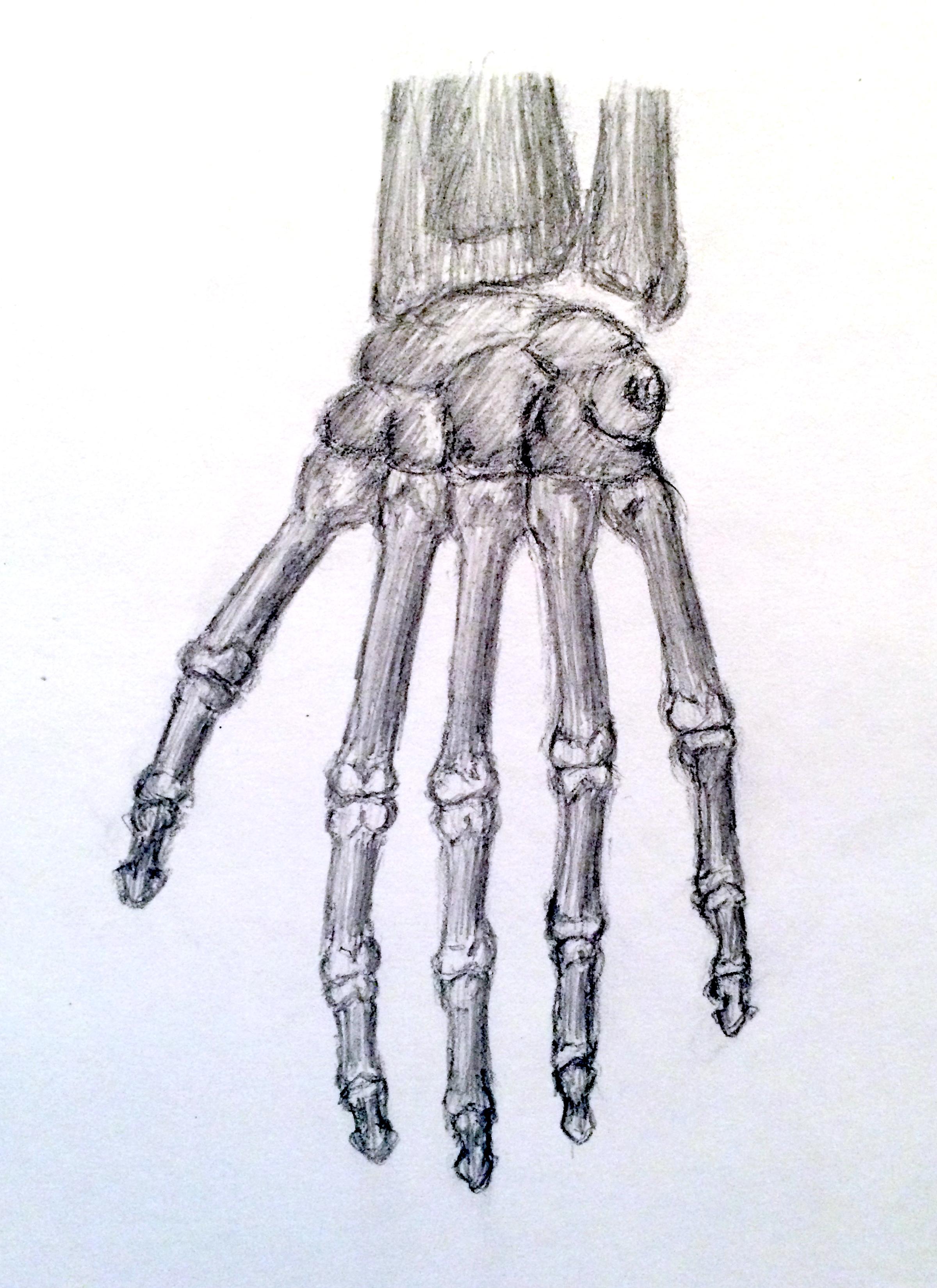 Bone Hand Top