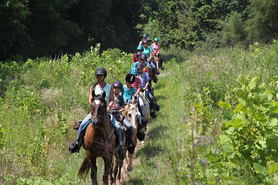 horseback large group.jpg