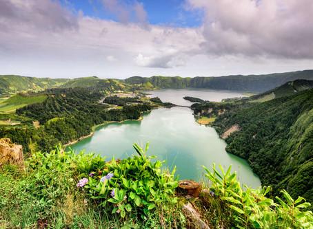 Azores Breeding program