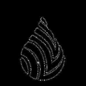 Transparent Ubunut Logo.png