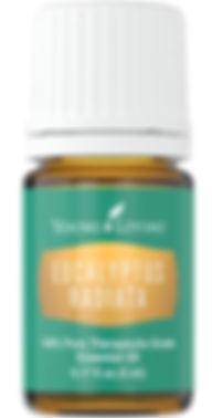 eucalyptus-radiata-essential-oil_edited.