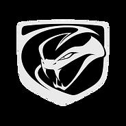 Viper-logo-2048x2048.png