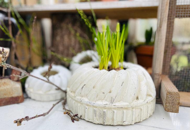 Gugelhupfform zum Bepflanzen
