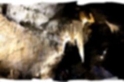 Marakoopa Cave (IMG_8868) PS Brush-min.j