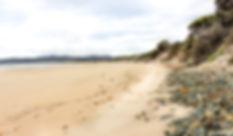 Bakers Beach (Narawntapu N P) (IMG_6958)