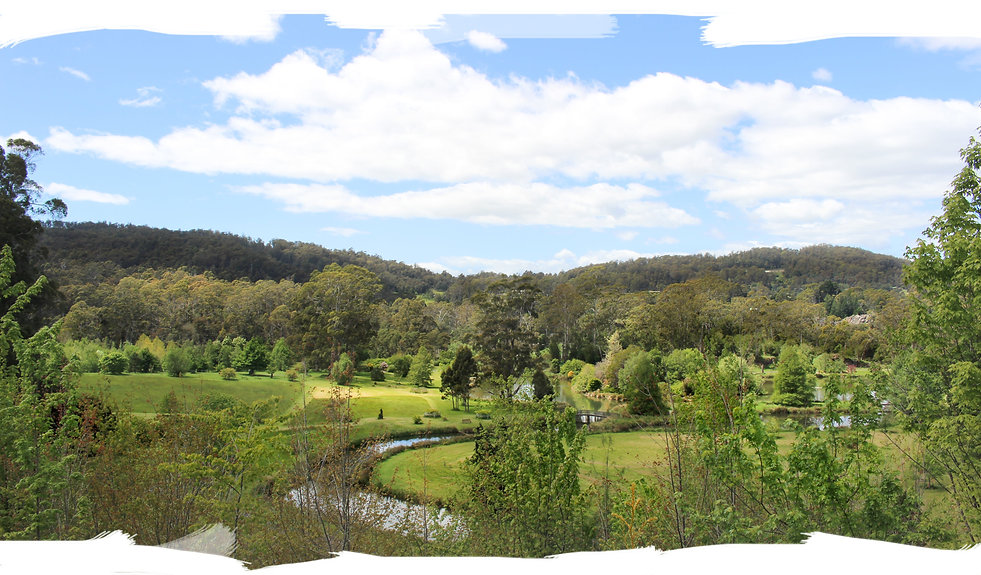 Tasmania Arboretum (IMG_3355) PS Brush-m