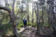 Douglas-Apsley National Park 5 (IMG_0964