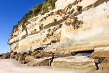 Travellers Tasmania - Fossil Cove Ship R