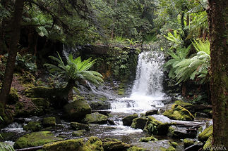 Mount Feild Horseshoe Falls (IMG_7508) W