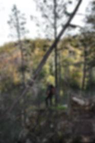 Douglas-Apsley National Park 6 (IMG_0995