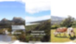 Correction JPEG File - With brush marks