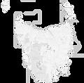 Compass Hut - White Tas Map for Website