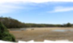 Don Heads Coles Beach 2-3km Circuit (IMG