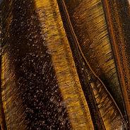 Tiger Eye 2.jpg