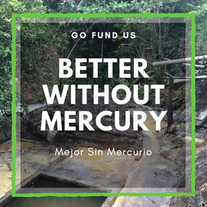 Better Without Mercury
